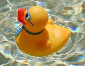 California has moved to restrict phthalate plasticizers in childcare items. Photo from http://commons.wikimedia.org/wiki/File:Geek_rubber_duck_2.jpg