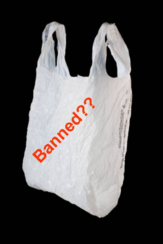 exploratory essay on plastic bag ban Earlier this month, new york city passed a controversial ordinance that imposes  a five-cent fee on paper and plastic bags the law, which will.