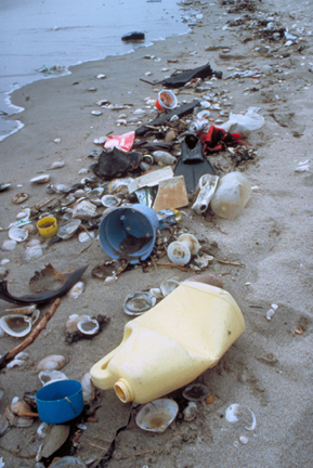 Beach cleanup is gyre cleanup.  Courtesy of Ocean Conservancy.