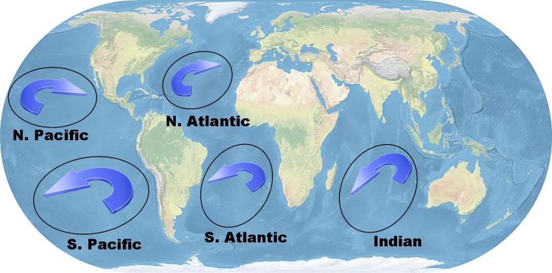 Subtropical gures